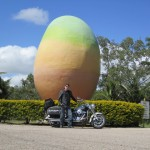 The Big Mango at Bowen