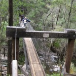 Suspension bridge at Beedelup Falls