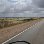 No trees on this stretch of the Nullarbor Plain